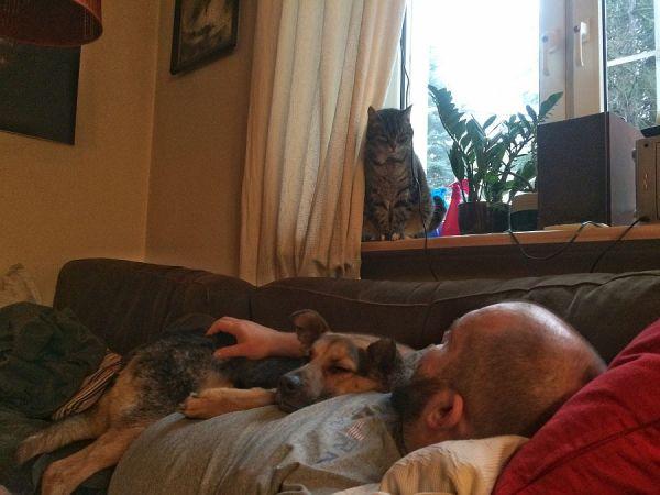Pierwszy rok z psem Filipem